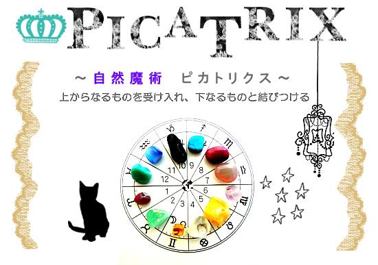 秋のワークショップ「自然魔術 ピカトリクス PICATRIX」